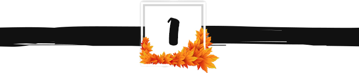 fall divider graphic 1