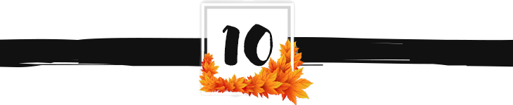 fall divider graphic 10