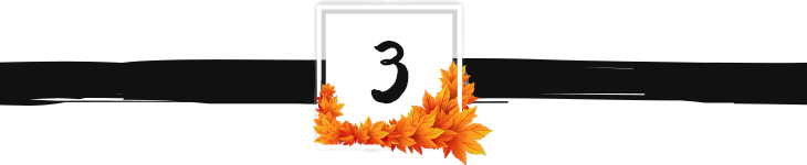 fall divider graphic 3