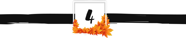 fall divider graphic 4