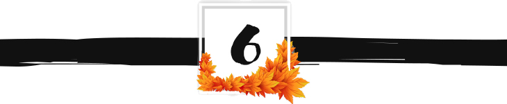fall divider graphic 6