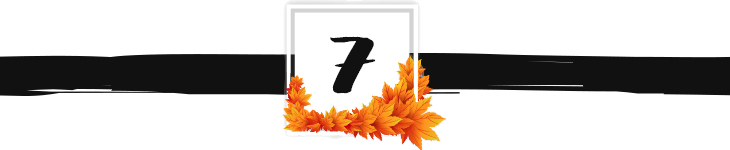 fall divider graphic 7