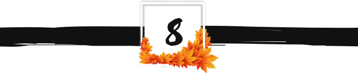 fall divider graphic 8