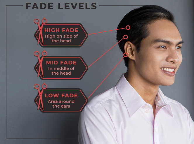 fade levels graphic