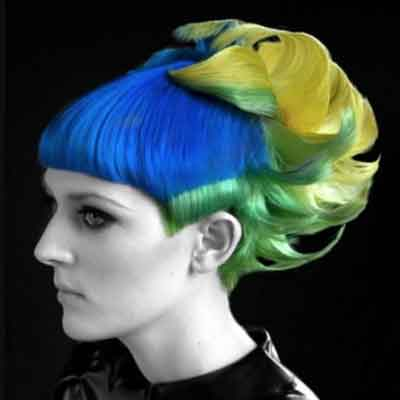 Fire and Ice Competition Hair