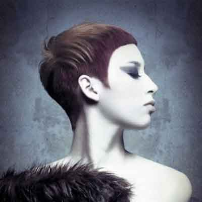 Muted Muse Hair Collection