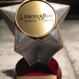 Intercoiffure Creative Every Day Keune Hair Award